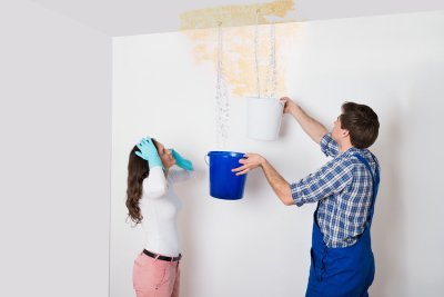 Leaking ceiling repair & mold prevention